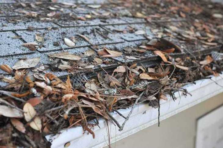 clogged gutter cleaning service in Chicago